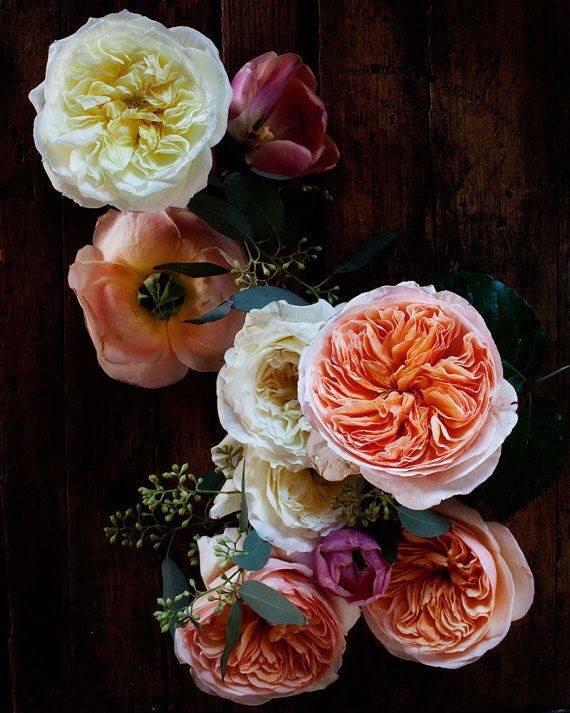 Valentine's 2017 @ Ludwig's Roses - Haakdoornlaagte
