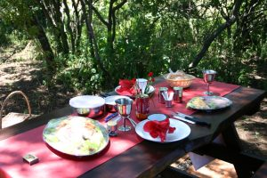 Bundu Bashing Camping Sites - Pretoria East