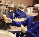 DC Laboratories Manufacturing & Production - Gauteng