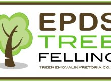 EPDS Tree Felling Gauteng - Pretoria