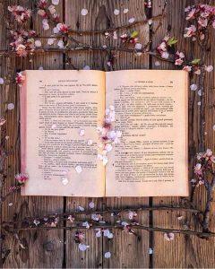 Hemelse Boekgenot Aanlyn Boekwinkel - Annlin Pretoria