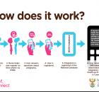 MomConnect Mobile Pregnancy Registration - Department of Health