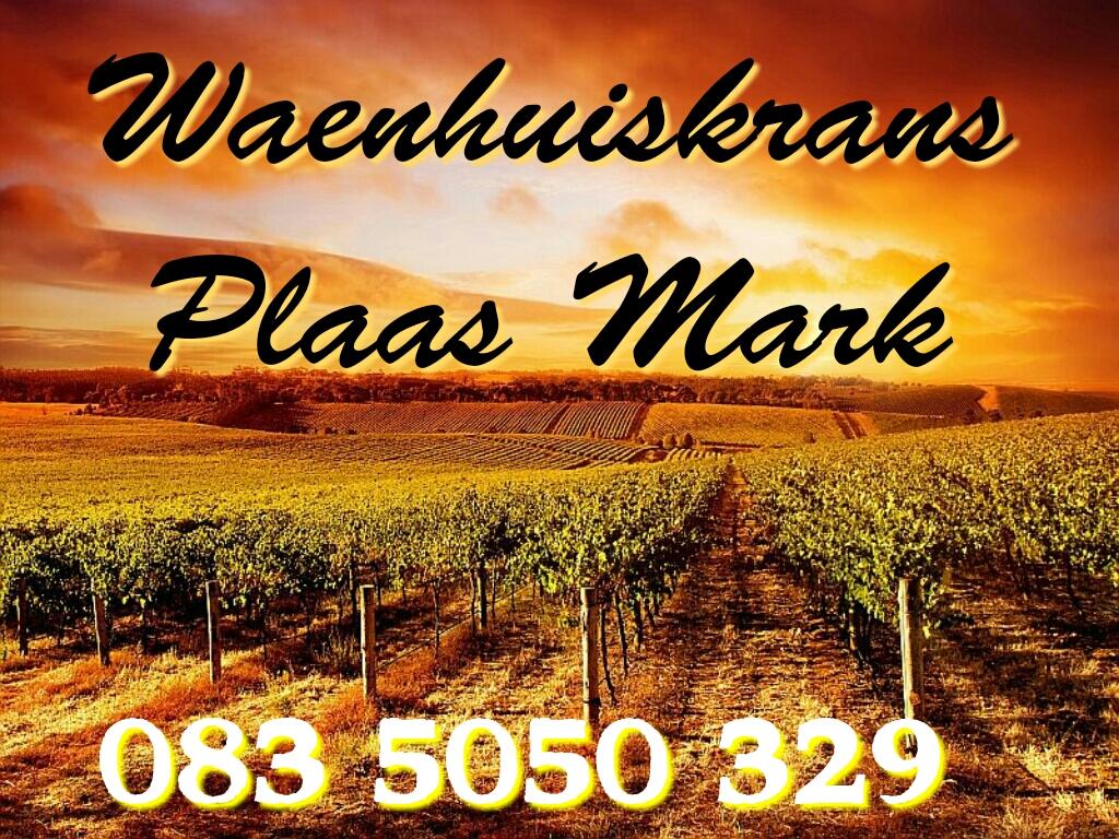 Waenhuiskrans Plaas Mark